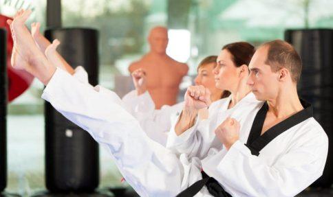 taekwondo school for adults